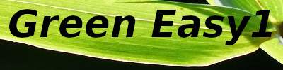Green Easy1